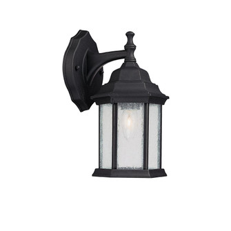 1 Light Outdoor Wall Lantern (42|9832BK)