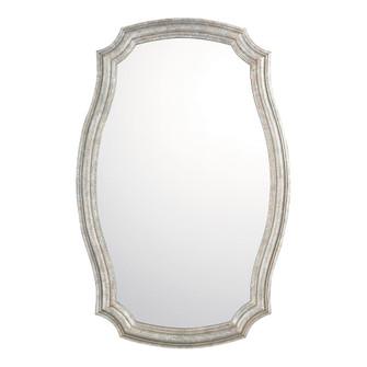 Decorative Mirror (42|M362384)