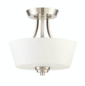 2 Light Semiflush Convertible (20 41952-BNK)