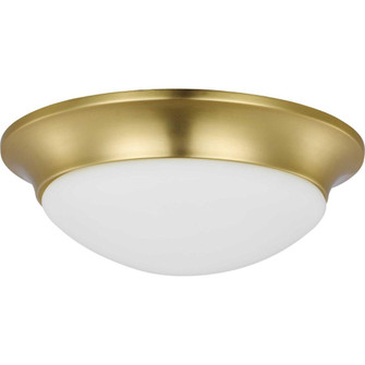 """Two-Light 14"""" Etched Glass Flush Mount (149 P350147-012)"""
