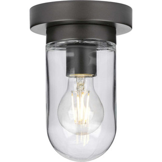 Signal Collection One-Light Flush Mount (149 P350145-143)