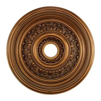 English Study Medallion 24 Inch in Antique Bronze Finish (91|M1012AB)