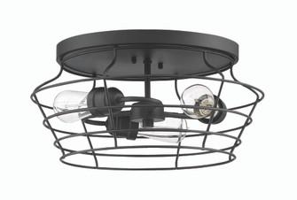 3 Light Flushmount (20 50683-FB)