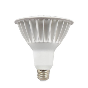 Accessories-Bulb (BL16PAR38FT120V30)