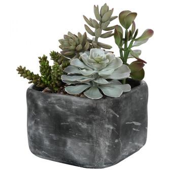 Uttermost Alverio Desert Garden Succulents (85 60173)