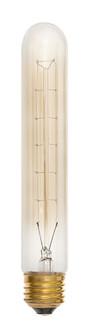 LAMP (87 00T10CLAM)