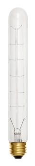 LAMP (87 00T10CLR3)