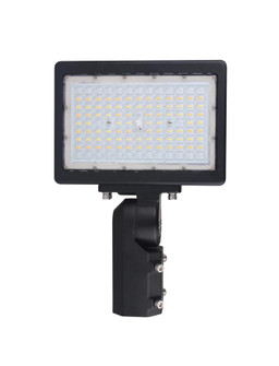 150W LED FLOOD LIGHT (81 65/620)