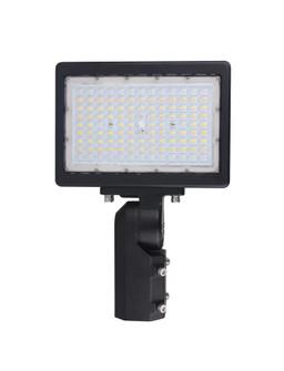 150W LED FLOOD LIGHT (81 65/619)