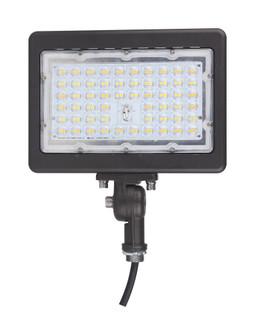 70W LED FLOOD LIGHT (81 65/616)