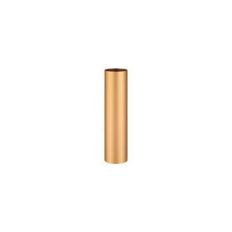 NEPTUNE,12IN EXTENSN TUBE,GOL (4304|37186-029)