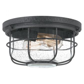 Saluda Outdoor Lantern (26|SDA1612DO)