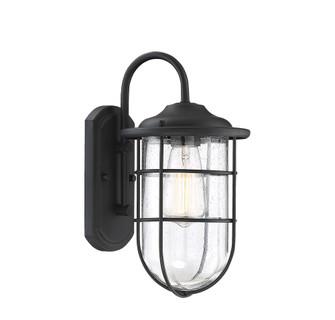 1 Light Black Exterior Wall Sconce (8483|M50015BK)