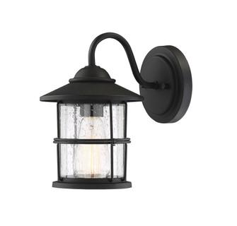 1 Light Black Exterior Wall Sconce (8483|M50014BK)