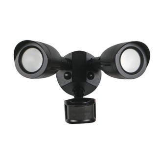 LED 2 BULLET HEAD SECURITY LGT (81 65/721)
