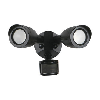 LED 2 BULLET HEAD SECURITY LGT (81|65/715)