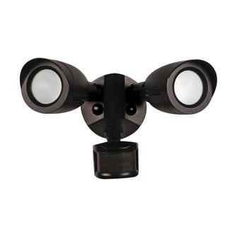 LED 2 BULLET HEAD SECURITY LGT (81|65/713)