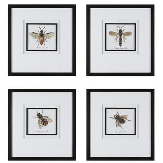 Uttermost Anthophila Framed Prints, S/4 (85|41428)