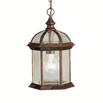 Outdoor Pendant 1Lt LED (10687|9835TZL18)