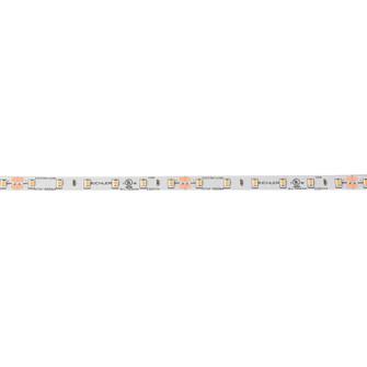 24V High Dry 2700K LED Tape 10 (10687 6T110H27WH)