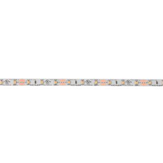 12V High Dry 2700K Tape 16 (10687 4T116H27WH)