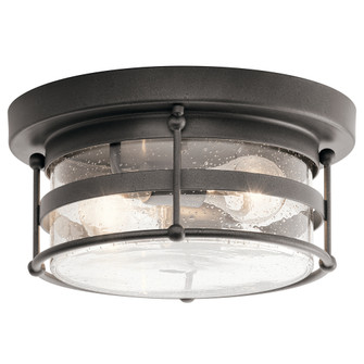 Outdoor Ceiling 2Lt (10687|49965AVI)