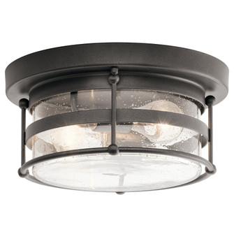 Outdoor Ceiling 2Lt (10687 49965AVI)
