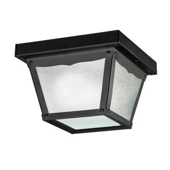 Outdoor Ceiling 1Lt (10687|365BK)