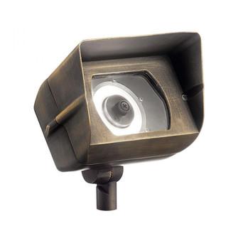 LED Wall Wash (10687|16070CBR30)