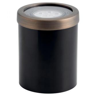 PAR 36 Well Brass Trim (10687|15507CBR)