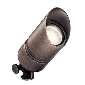 12V Brass Accent CBR (10687|15475CBR)
