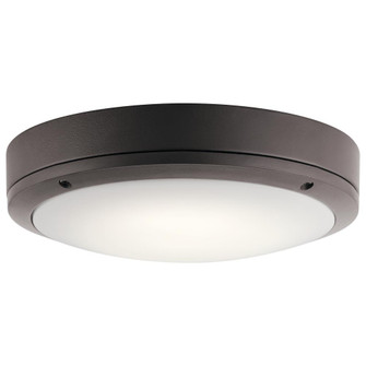 Outdoor Wall/Ceiling LED (10687|11132AZTLED)
