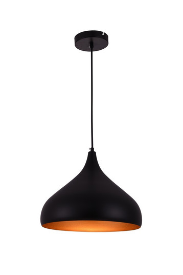 Circa Collection Pendant D12.5in H10in Lt:1 Black Finish (758|LDPD2046)