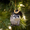 Raccoon with Cocked Hat Ornament