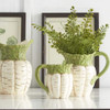 White Carrot Pitchers, Set of 3