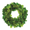 "Magnolia Green Leaf Wreath 30"" | The Shops at Colonial Williamsburg"