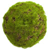 """Moss Orb 4""""   The Shops at Colonial Williamsburg"""