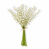 """Lily of the Valley Bundle 17""""   The Shops at Colonial Williamsburg"""