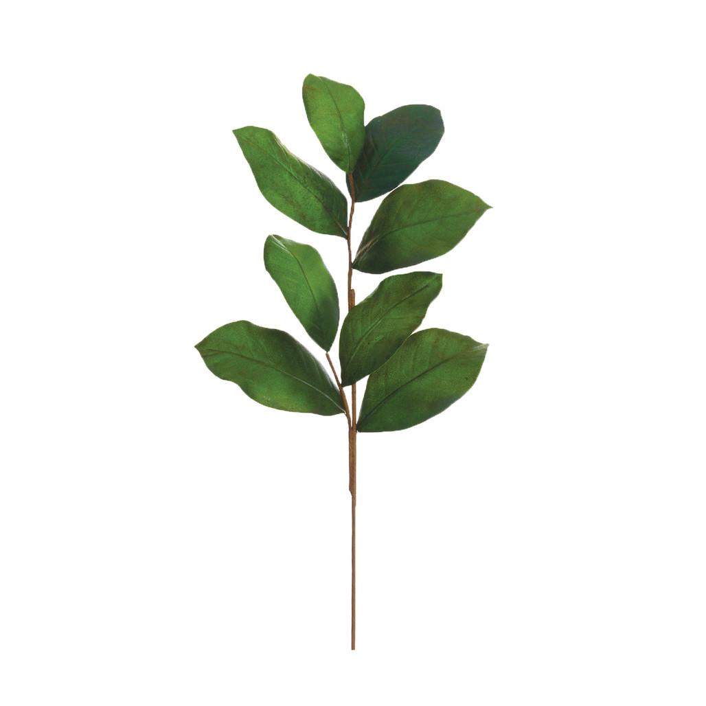 """Magnolia Leaf Spray - 26"""""""