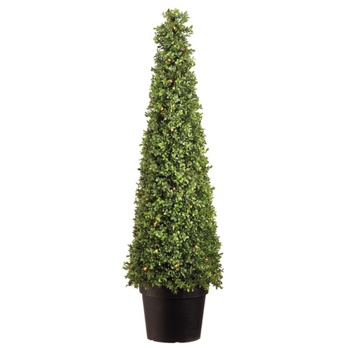 Boxwood Cone Lighted Topiary