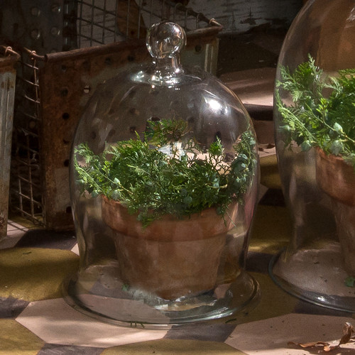 Small Bell Jar | The Shops at Colonial Williamsburg