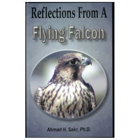 Reflections from a Flying Falcon