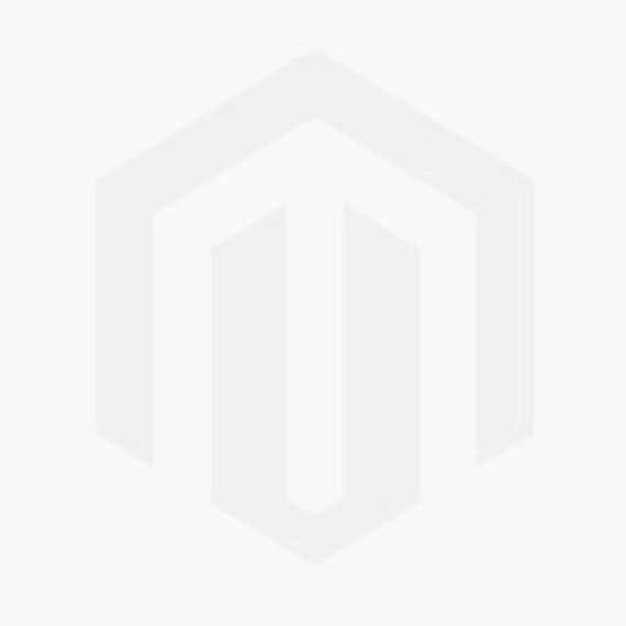 Rashid Songs v3.0 (Arabic) [PC]