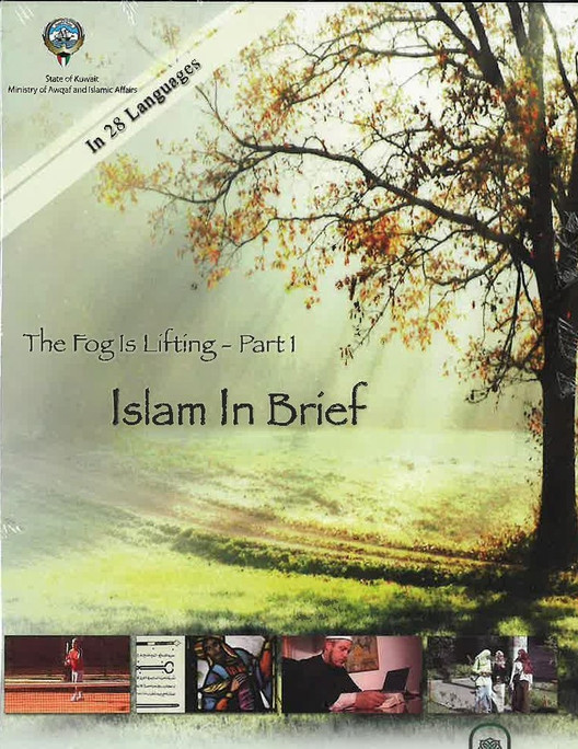 Islam in Brief - Documentary on Islamic Culture  - DVD video (USED)