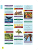The Clear Quran® Series Dictionary | 12 Copies Bulk
