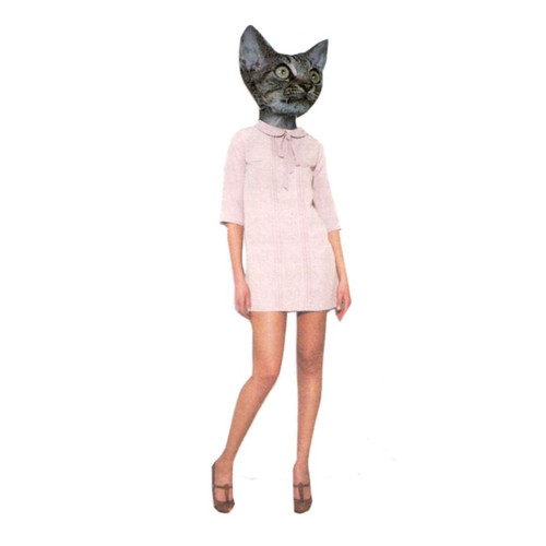 FASHCAT ELLIE CARD