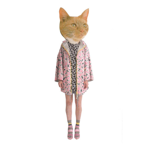 FASHCAT KATE CARD
