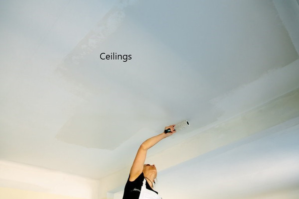 Interior Ceilings: Height up to 20 Feet. Select to view all options and pricing