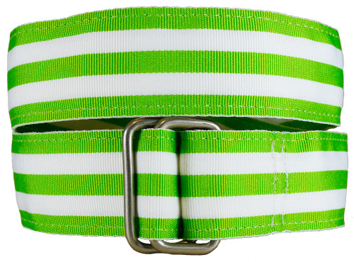 Lime Grosgrain Belt