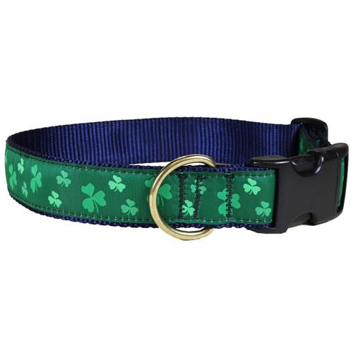 """Shamrock 1.25"""" Dog Collar"""